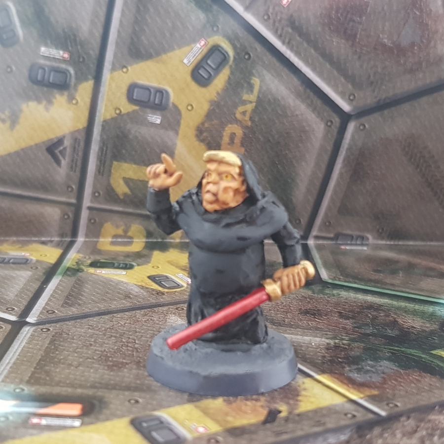 Painted Darth Trump